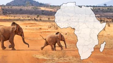 Slepá mapa Afriky – Výběr map ke stažení zdarma